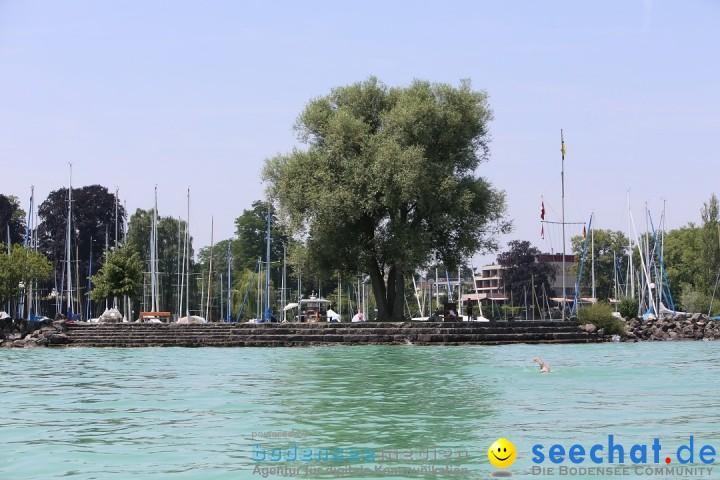 begleitboot-bodenseequerung-mim-alex-04072015-Bodensee-Community-SEECHAT_DE-IMG_4738